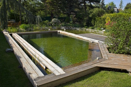 La piscine cologique et naturelle for Plan piscine naturelle